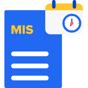 Monthly MIS Report